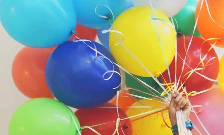underholdning til 50 års fødselsdag